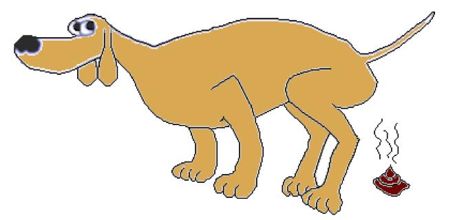 chien maigre qui a besoi de